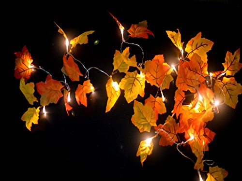 Gogo shopping2 AA Battery Powered Lighted Fall Garland – 8.2 Feet - Shades of Orange and Yellow Leaves with 20 Lights - Perfect Fall/Thanksgiving Decoration (Warm white)