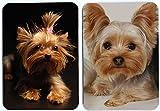 Yorkshire terrier dog fridge magnet 2 pcs#3