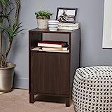 Miya Single Shelf Walnut Finished Faux Wood Cabinet with Sonoma Oak Interior