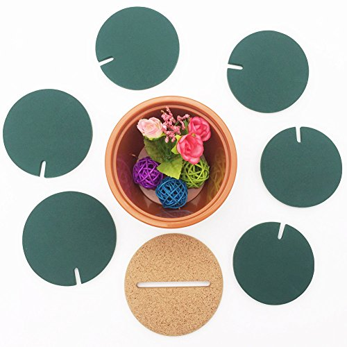 Cactus Coasters Set of 6 with Pot Shaped Holder, Prevents Table Damage and Spill, Gift ideal for Home and Office by Miragee (Image #4)