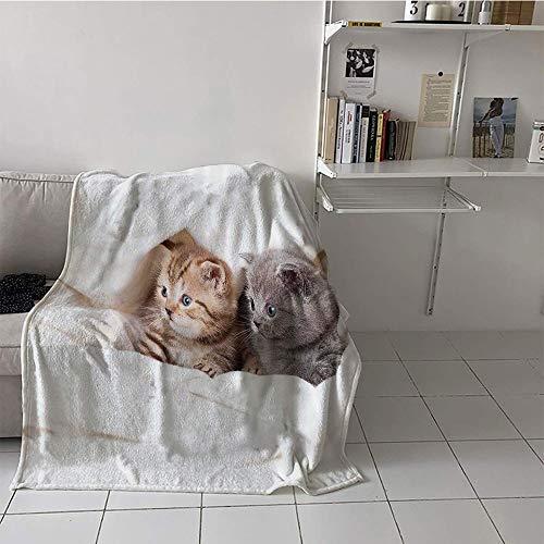 Khaki home Children's Blanket Portable Plush Throw Blanket (60 by 62 Inch,Animal Decor,Two Little Scottish Fold Kittens on The White Background Digital Print,White and Grey ()