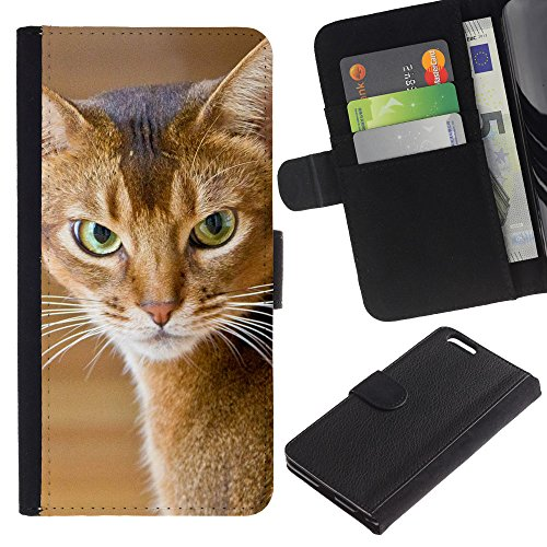 OMEGA Case / Apple Iphone 6 PLUS 5.5 / American shorthair angry cat / Cuir PU Portefeuille Coverture Shell Armure Coque Coq Cas Etui Housse Case Cover Wallet Credit Card