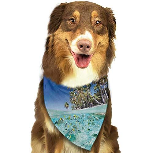 Custom pet Scarf Tropical Exotic Island Above and Underwater Picture Scenic Polynesian Untouched Shoreline W27.5 xL12 Scarf for Small and Medium Dogs and Cats