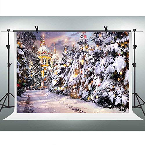 FHZON 10x7ft Snow Scene Backdrop Pine Trees on Both Sides of The Street in Front of The Castle Photography Background Theme Party Wallpaper Photo Booth Props LSFH1173 (Wallpaper Christmas Hd Snow Lights)