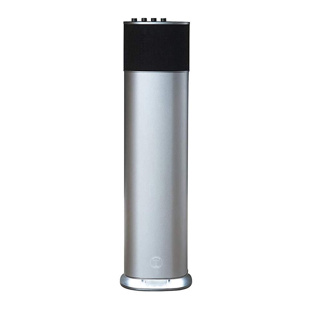 200W Bluetooth Speaker, ABRAMTEK E500 High Power Wireless Portable Speaker - Space Gray