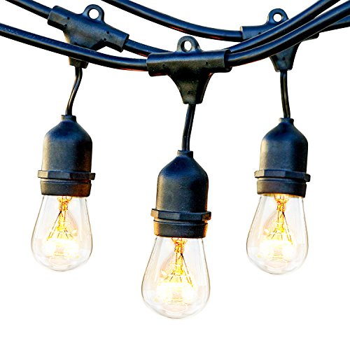 Brightech Ambience Pro Commercial Grade Outdoor Light Strand with Hanging Sockets - 48 Ft Market Cafe Edison Vintage Bistro Weatherproof Strand for Patio Garden Porch Backyard Party Deck Yard – Black (String Outdoor Lighting Patio)