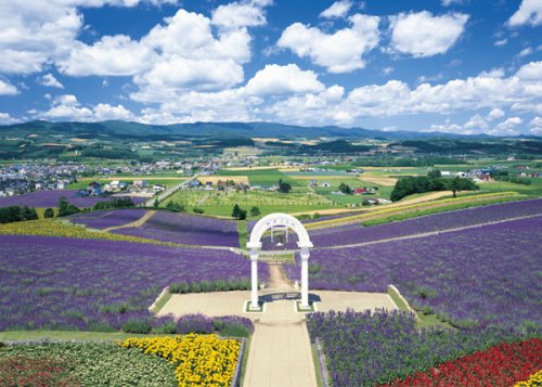 Expert 3000 small piece of an extreme puzzle the hill in Furano where a flower blooms - Hokkaido 21-509 by Epoch