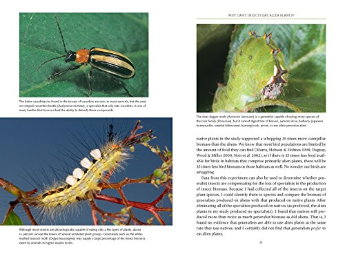 Bringing Nature Home: How You Can Sustain Wildlife with Native Plants, Updated and Expanded by Timber Press (Image #4)