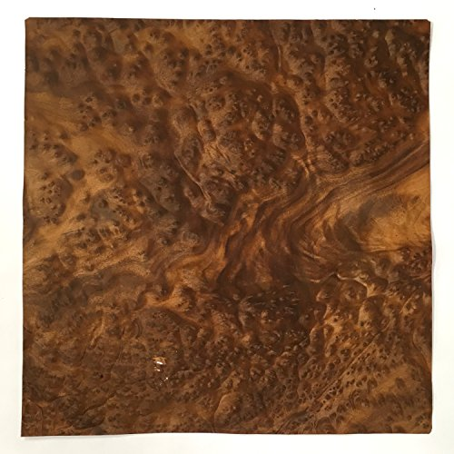 Exotic Wood Veneer (Camphor Burl Veneer - 15