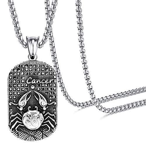 Xusamss Hip Hop Titanium Steel Twelve Constellation Dog Tag Pendant Crystal Necklace,24