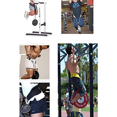 WINOMO Dip Belt Weight Lifting Pull Up Belt with Steel Chain