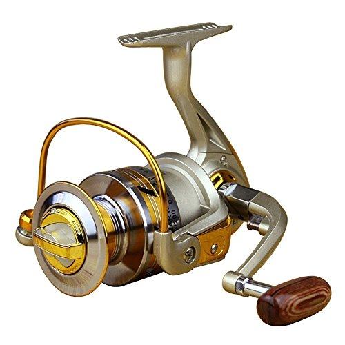 LeaningTech 5.5:1 10BB Ball Bearing High Speed Fishing Spinning Reel for Carp, Inshore & Saltwater Bait Fishing, Silver&Golden (EF3000)