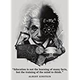 Palace Learning Albert Einstein Poster - Inspirational and Motivational Quote (18 x 24, Laminated)