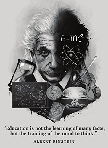 Palace Learning Albert Einstein Poster - Inspirational and Motivational Quote (18 x 24, LAMINATED) by Palace Learning