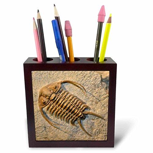 3dRose ph_165035_1 Chai-Hebrew Word for Life-Hai Jewish Symbol-Black and White-Tile Pen Holder, 5-Inch