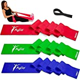 3 Long Exercise Therapy Stretch Bands with Door Anchor | Up to 35 lbs of Elastic Resistance | Physical Fitness, Rehab, Pilates Workout