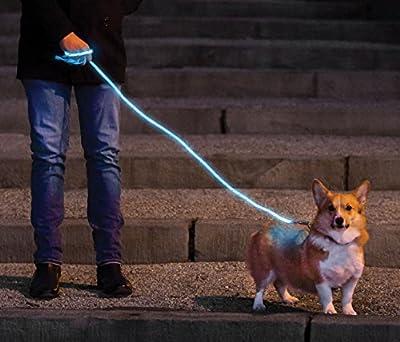 Nitey Leash - LED Glow in the Dark Pet Dog Leash (Blue)