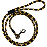 Extremely Durable Dog Rope Leash, Premium Quality Mountain Climbing Dog Rope Lead, Strong