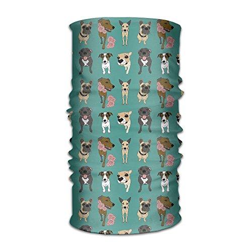 HEHE TAN Beanie Pug Dog Doggy Cute Pattern Multifunctional Bandanas For Men Women Sweatband Elastic Turban Headwear Headscarf
