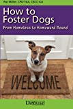 How to Foster Dogs: From Homeless to Homeward Bound
