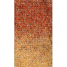 Plymouth (1-Pack) Encore Worsted Colorspun Yarn Copperdrift 7172-1P