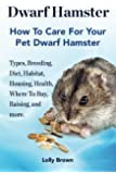 Dwarf Hamster: Types, Breeding, Diet, Habitat, Housing, Health, Where To Buy, Raising, and more. How To Care For Your Pet Dwarf Hamster.