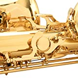 Singer's day SDBS-2001 Low A Baritone Saxophone Low
