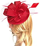 Biruil Fascinators Sinamay Feather Womens Pillbox Flower Derby Cocktail Tea Party Hat (Red)