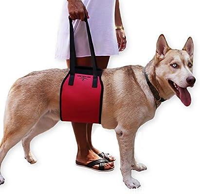 Creación ® Perro elevación arnés, cómodo, suave y lujoso – Ayuda ...
