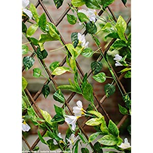 Events & Crafts Accordian Ivy Lattice Fence with Flowers 8' 7