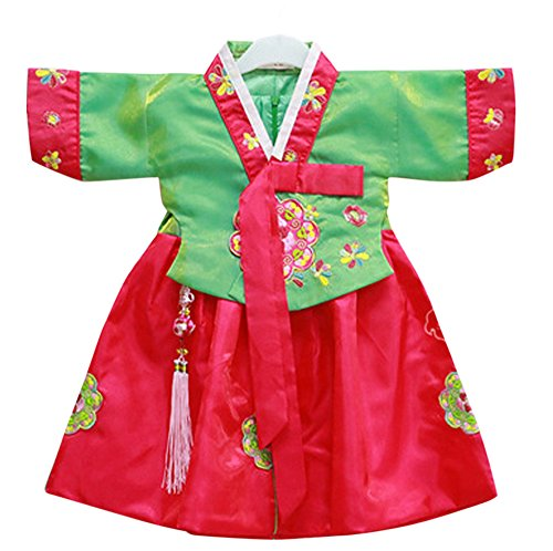 Korean Costume For Girl Kids (CRB Fashion Girls Toddler Korean Top Hanbok Outfit Dress Costume (2 to 3 Years Old, Style #5))