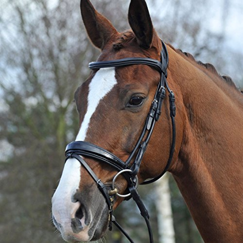 PDS Patent Rolled Snaffle Bridle Cob (Rolled Bridle)