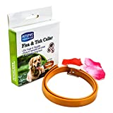 Dog Flea Treatment Collar - BUTEFO Flea and Tick Collar for All Kinds of Dogs and Cats Natural Essential Oil