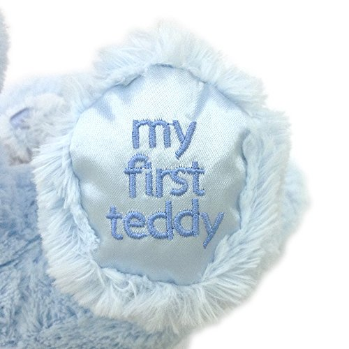 "Gund My1st Teddy Blue 10"" Plush"