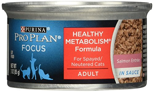 Purina Pro Plan Focus Balanced Energy Salmon Entree in Sauce