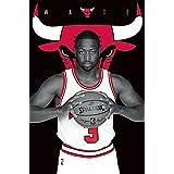 """Trends International Chicago Bulls Dwayne Wade Wall Poster 22.375"""" x 34"""""""