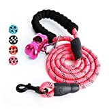 #7: Fukkie 5 FT Strong Dog Leash with Comfortable Padded Handle and Highly Reflective Threads, Heavy Duty Nylon Rope Leashes for Medium and Large Dogs, Pink
