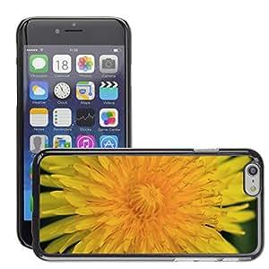 "Print Motif Coque de protection Case Cover // M00158514 Flor del diente de león amarillo // Apple iPhone 6 6S 6G 4.7"""