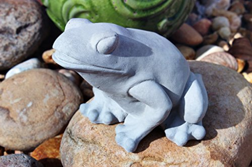 Frog Statue Concrete Outdoors Garden Grey Indoors Decor Toad Stone