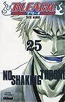 Bleach, Tome 25 : No Shaking Throne par Kubo
