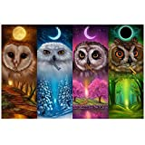 #6: BBTO DIY Diamond Painting Kits Owl 5D Full Drill Rhinestone Animals Painting Art Craft for Home Decoration