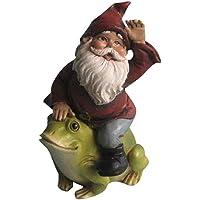 Hi-Line Gift Ltd Fairy Garden Gnome Travels on A Frog