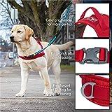 Kurgo Dog Harness | No Pull Training Pet Walking