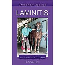 Understanding Laminitis: Your Guide to Horse Health Care and Management
