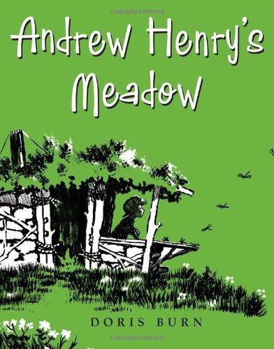 Andrew Henrys Meadow Doris Burn product image