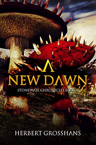A New Dawn (A Stonewall Chronicles Novel Book 1)