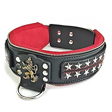 Image of Bestia`s' The General Genuine Leather, Handmade, 2.5 inch Wide Dog Collar. Changeable Designs! Large Breeds only, Cane Corso, Pitbull, Rottweiler, Bully, Mastiff, Dogo, 100% Leather Pet Supplies