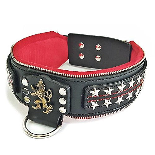 """Bestia`s"""" The General Genuine Leather, Handmade, 2.5 inch Wide Dog Collar. Changeable Designs! Large Breeds only, Cane Corso, Pitbull, Rottweiler, Bully, Mastiff, Dogo, 100% Leather"""