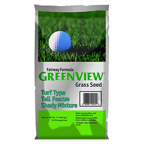 GreenView Fairway Formula Grass Seed Turf Type Tall Fescue Shady Mixture, 25 lb Bag (Blue Fescue Seed)
