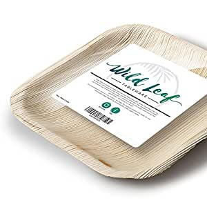 All Natural Palm Leaf Plates, 25 Pack / 6 Inch. Elegant and Eco Friendly Disposable Dessert Plates by Wild Leaf
